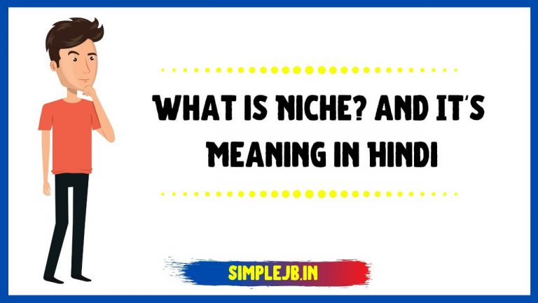 What is Blog Niche? and Niche Meaning in Hindi