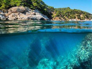 विश्व महासागर दिवस का इतिहास (World Oceans Day History)
